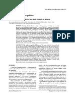 4771-18667-1-PB.pdf
