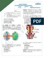 Domiciliarias - SIg - SEmana 17 - B