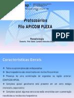 9_Plasmodium