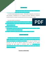 Características interpuertos