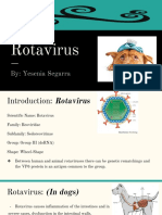 rotavirus presentation