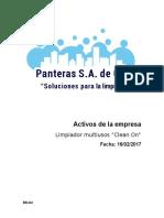 Activos de La Empresa _PANTERAS