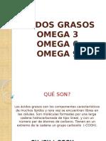 acidosgrasos-131127015511-phpapp01