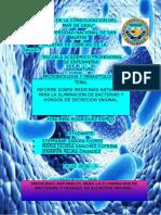 Micro Informe