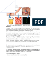 Exámenes de Hipertensión