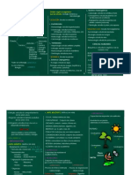 biologiaw.pdf