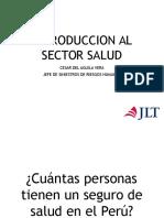 Introduccion Al Sector Salud 30032017