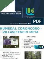 HUMEDAL CORONCORO 1