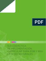 Guia de Implementacion Del Curriculo de CCNN 1
