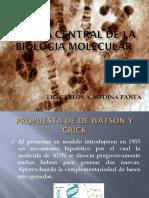 DOGMA CENTRAL DE LA BIOLOGIA MOLECULAR.pdf
