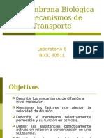 DGlab7.ppt