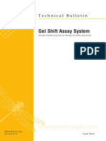 Gel Shift Assay Systems