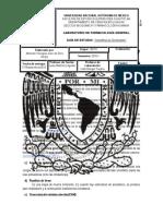 283154526-Previo-4-Anestesicos-Generales.docx