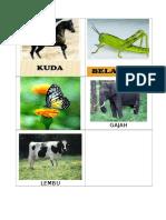 gambar haiwan.docx