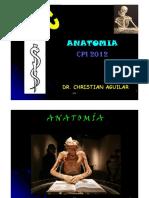 Cfc - Osteología Ms (PDF)
