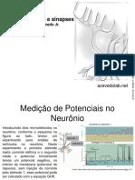 biofisica6.pdf