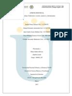 Trabajo Colaborativo vectores, matrices y determinantes