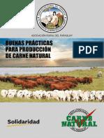 Buenas Practicas Para Produccion Carne Natural