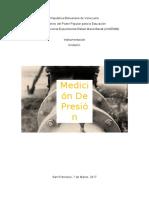 Informe - Medicion de Presion - Instrumentacion