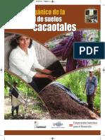 Fertilidad de Suelo en Cacao IPADE