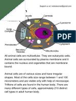 Animal Cell.pdf