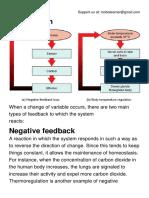 Positive and Negative Feedback.pdf