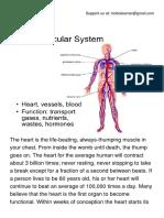 The Cardiovascular System .pdf