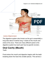 The Digestive System.pdf