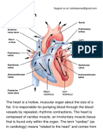 The Heart.pdf
