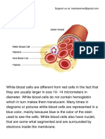 White Blood Cells (WBC).pdf