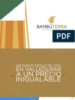 Bambu terra