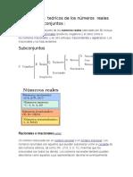Fundamentos Teóricos de Los Números Reales Con Sus Subconjuntos