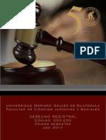 Programa Derecho Registral