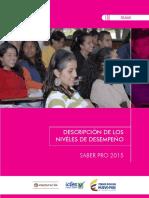 Guia descripcion niveles de desempeno 2015 saber pro.pdf