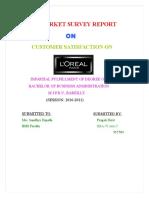 seema-Loreal-Paris - Copy 12.doc