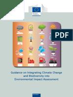 EIA Guidance.pdf