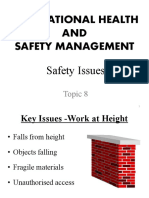 Lecture 8-Safety Issues