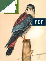 Storey Publishing Fall 2017 Catalog