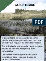 Ecosistema Para Pregrado 2013