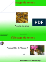 elevage-de-reines.pdf
