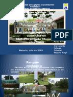Plantas en  Parque La Guaricha