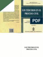 Los Terceros en El Proceso Civil