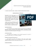 Guias Para Las Planificaciones ( ESTRATEGIAS)