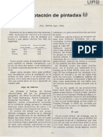 Gallina de Guinea Explotacion Comercial