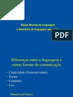 Aula++Bases+Neurais+da+Linguagem