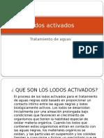 lodosactivados-111015165506-phpapp02.pptx