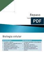 repaso sis respiratorio.pdf
