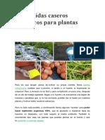 6 Pesticidas Caseros Ecológicos Para Plantas