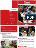 4_Diptico_Asignacion_Familiar.pdf
