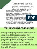 Presentation1 Kuku